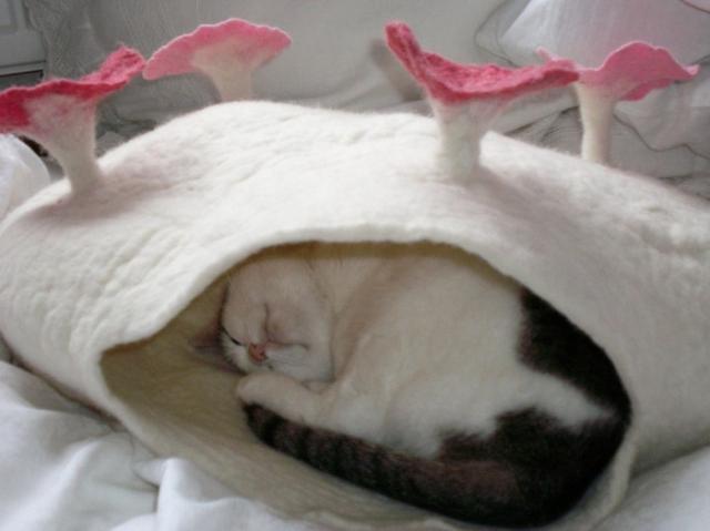 Как сделать кошке дом своими руками из