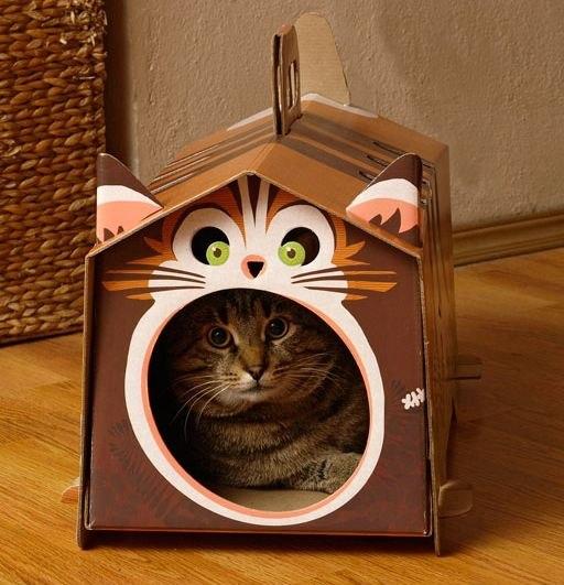 Дом для кота своими ключами