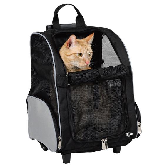 Рюкзак для прогулки кота