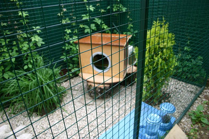 вольер для кошки на даче
