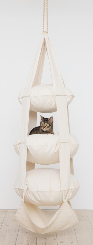 кошачья трапеция Cat's Trapeze