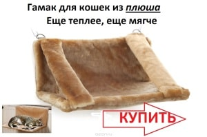 gamak-dlya-koshki-