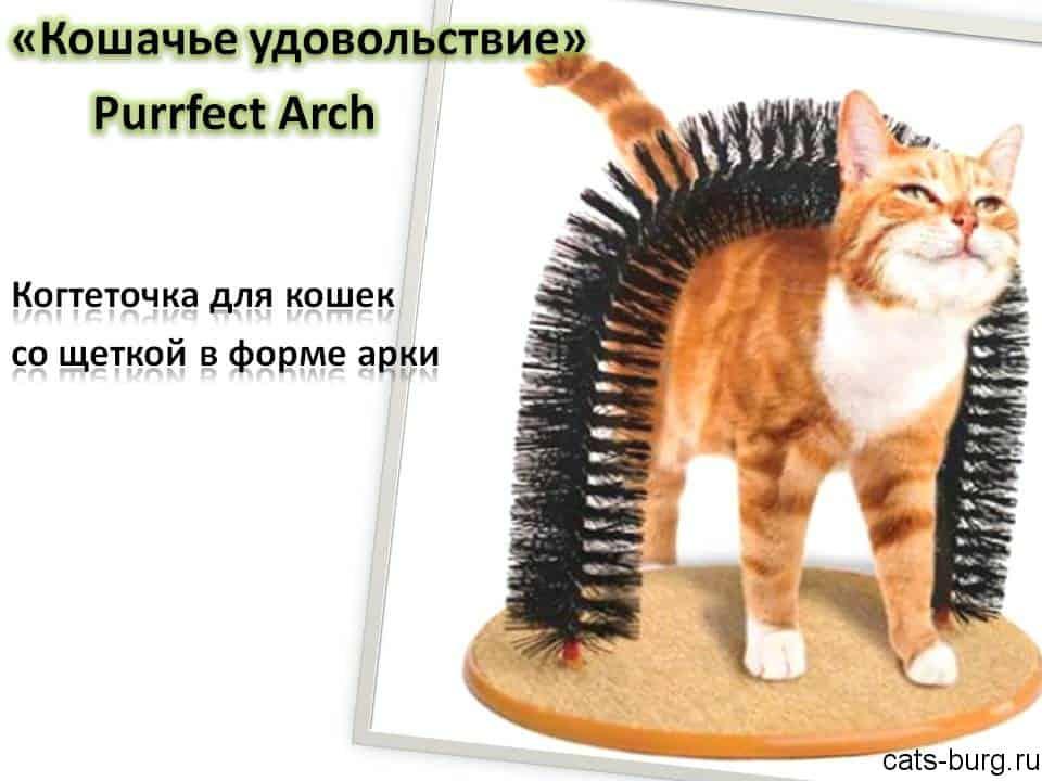 когтеточка для кошек с щеткой-аркой