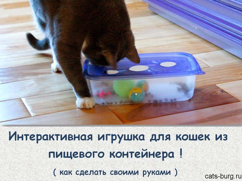 как сделать игрушки для кошек